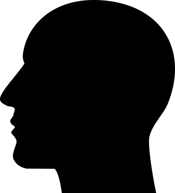 cranium-1299985_640